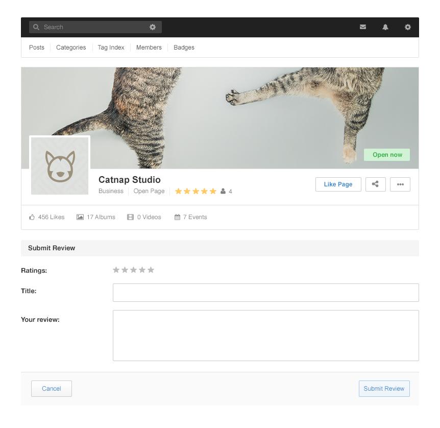 Page Reviews - Screenshot